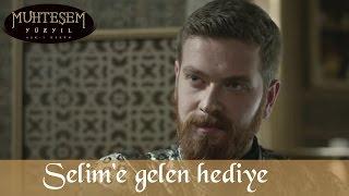 Şehzade Selim'e Gelen Hediye - Muhteşem Yüzyıl 131.Bölüm