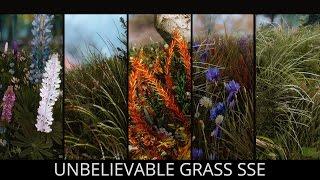 Skyrim SE Mods - Unbelievable Grass SSE