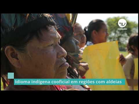 Comissão aprova projeto que torna idioma indígena língua cooficial em regiões com aldeias - 02/07/21