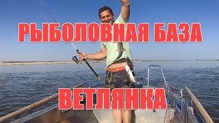 Ветлянка астраханская область рыбалка о рыбалке