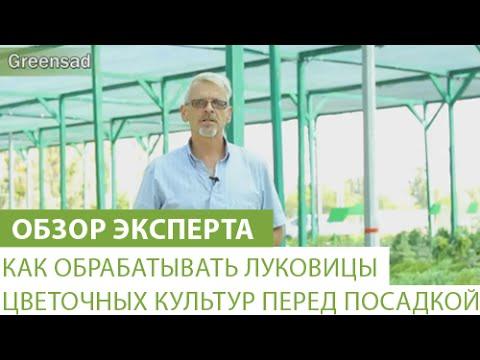 Лечение гепатита с даклинза