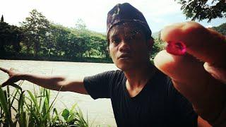 Download Video Batu Mustika Merah Delima Dilempar Ke Sungai Dan Lihat Keajaiban Yang Terjadi MP3 3GP MP4