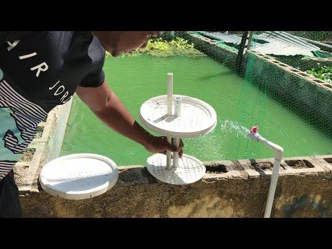 elaborar filtro casero para estanque de goldfish o cualquier pez