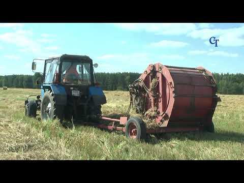 Клип к Дню работников сельского хозяйства и перерабатывающей промышленности 2017