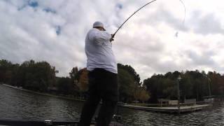Bass Fishing Challenge | Enigma Fishing Rods