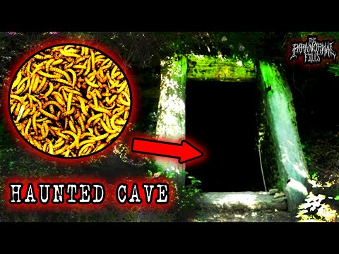 1000s Of Worms Found In Haunted Cult Cave