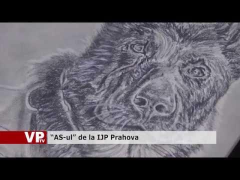 """""""AS-ul"""" de la IJP Prahova"""