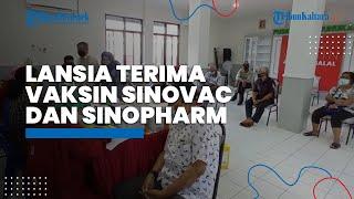 Lansia yang Divaksin Covid-19 dengan Sinovac dan Sinopharm, Direkomendasikan WHO Dapat Dosis Ketiga