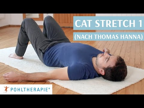Cat Stretch 1 (nach Thomas Hanna)