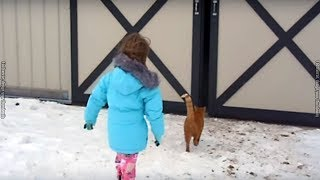 Little Girl Following Her Cat Into A Barn And Accidentally Uncovers Her Parents' Huge Secret