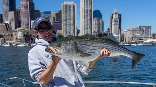 Boston Harbor Stripers | S14 E2