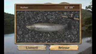 Picture of a game: Reel Fishing