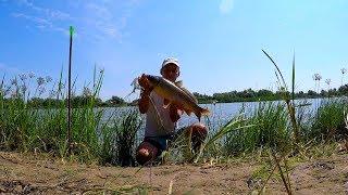 Рыбалка на сазанам в астрахань