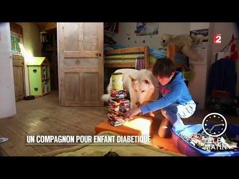 Types de céréales dans le diabète