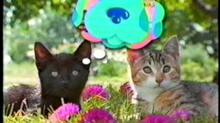 Nick Jr. Coming Up Next Bumper: Cats #2 (Blue's Clues & Kipper)