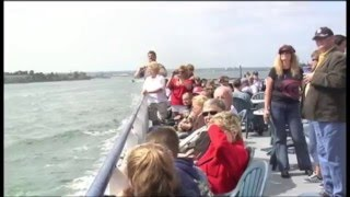 San Diego Harbor Cruises & Sea Lion Adventures