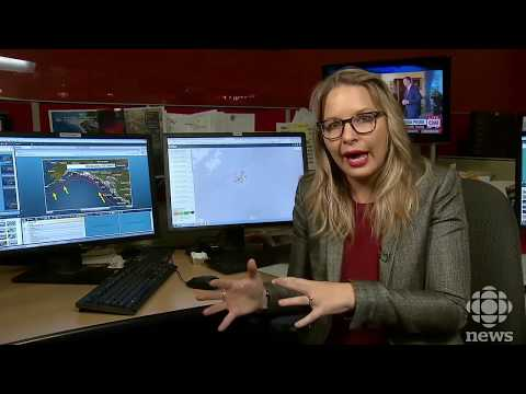 Tsunami science Q&A | What's Canada's real tsunami and earthquake risk?