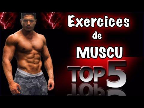 Les muscles sur les paumes