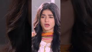 Waqt Se Bara Koi Munsif Nahi - Rang mahal #shorts