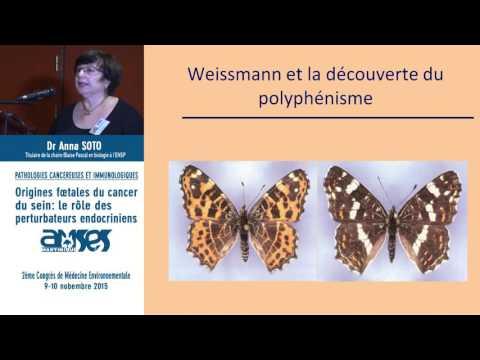 Mst papillomavirus homme symptomes