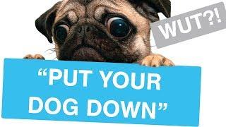 "r/EntitledParents - ""PUT YOUR DOG DOWN!"" - Reddit Stories"