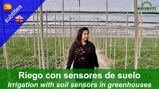 Irrigation with soil sensors in greenhouse production in Almeria