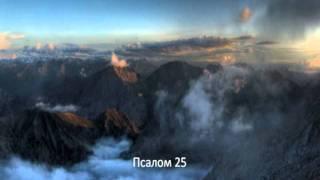 Слово Божье - Псалом 24,25 Укажи мне, Господи, пути Твои