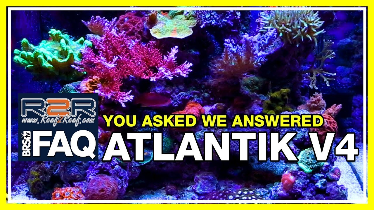 R2R FAQ: Orphek Atlantik V4 Q&A session with Ryan