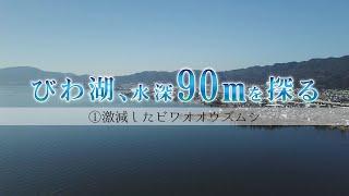 【びわ湖、水深90mを探る。】①激減したビワオオウズムシ