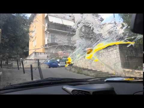 Lanalisi su un parassita di Almaty