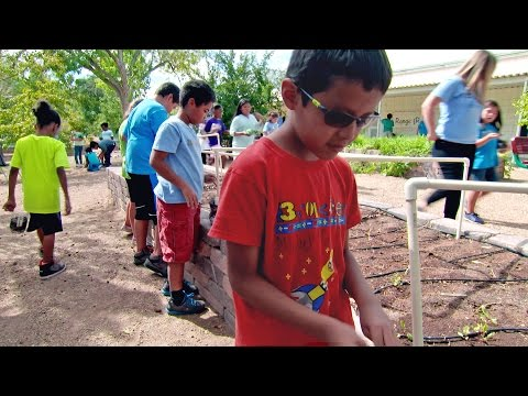 Video Garden-Based Learning: Engaging Students in Their Environment