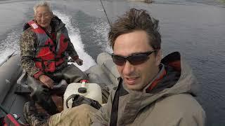Рыбалка на реке алдан и притоках