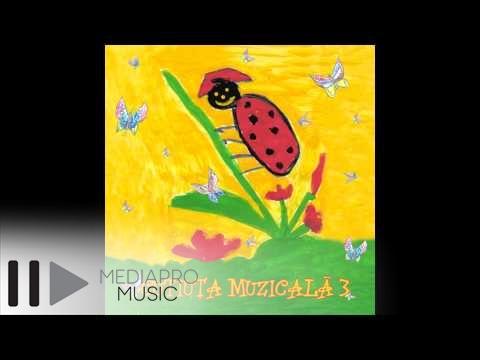 Cutiuta muzicala - Saniuta mea