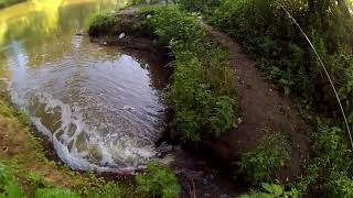 Отчет о рыбалке на реке истра
