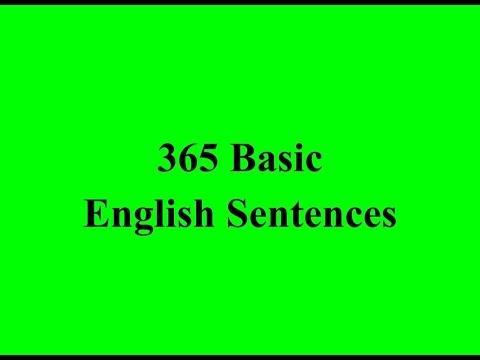 365 Basic English Sentences