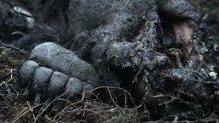 10 Foot Cannibal Bear | Life Below Zero | Earth Unplugged