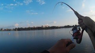 Водоемы для рыбалки в белгороде