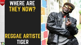 Where are they now? - Tiger (Reggae Artiste) - This Cat has more than Nine lives
