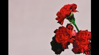 John Legend - All Of Me (Album version)
