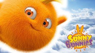 Cartoons for Children   Sunny Bunnies POWER OF THE BUNNIES    Funny Cartoons For Children