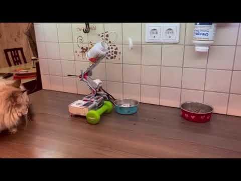 Робот - помощник BUDDY (LEGO MINDSTORMS EV3) готовит завтрак для кошки Ириски