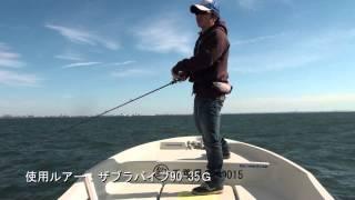 東京湾 ヘヴィーバイブレーションで釣る秋の良型シーバス(前編)