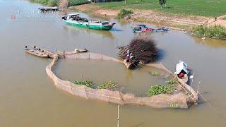 Dỡ Chà Kiếm Tiền Ăn Tết ở Miền Tây l Cá Nhảy Thấy Ham l Khám Phá Sông Nước Miền Tây Phần 15