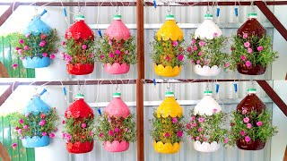 Brilliant Ideas, Colorful Hanging Garden From Recycled Plastic Bottles