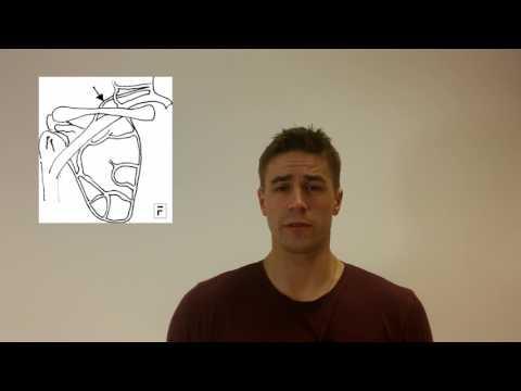 Ćwiczenia na mięśnie rąk na zdjęciu