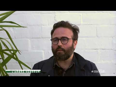 Julien Cridelause - Vu d'en bas