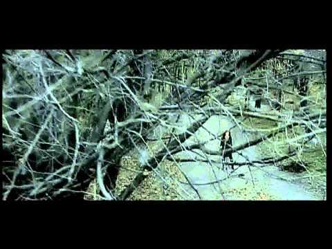 Hripsime Hakobyan - Du indz nerir