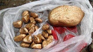 Думаю больше 20-ти килограмм золота?!
