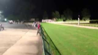preview picture of video 'Lead out of view of Ebro Greyhound I'm a lead here.'