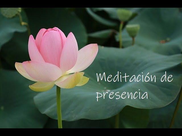Meditación de presencia